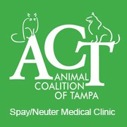 animal coalition of tampa