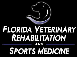 florida veterinary rehabilitation and sports medicine