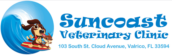 suncoast veterinary clinic