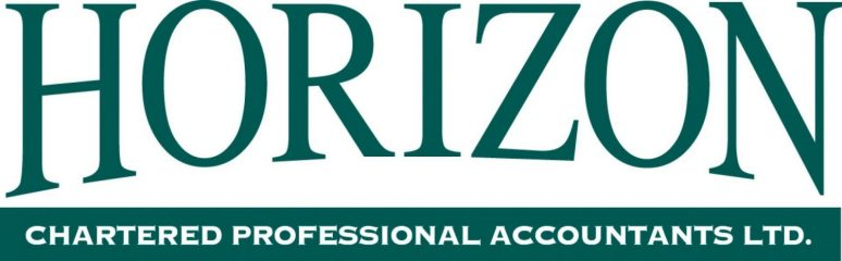 horizon chartered professional accountants