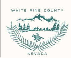 white pine county ambulance - ely