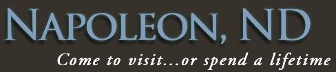 napoleon fire & ambulance - napoleon