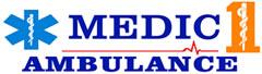 medic 1 ambulance - bridgman station