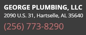 George Plumbing, LLC