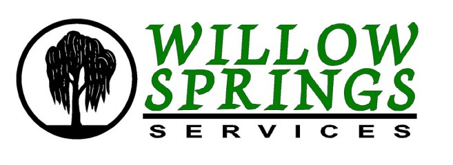 willow springs services inc