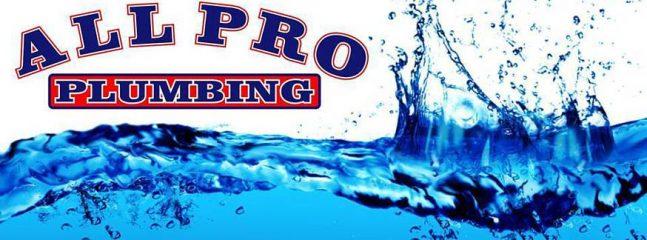 all pro plumbing - lakeland