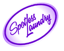spotless laundromat and dry cleaning