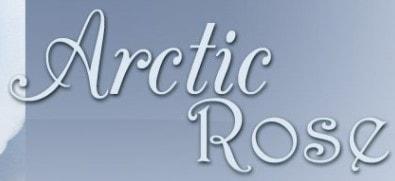 arctic rose bridal salon