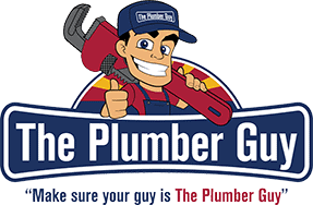the plumber guy - surprise