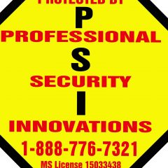 professional security innovations