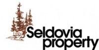 seldovia property - jenny chissus broker/owner