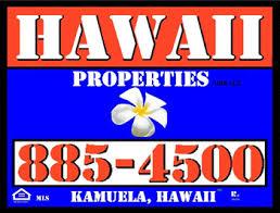 hawaii properties usa llc