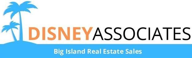 disney associates