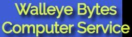 walleye bytes computer service