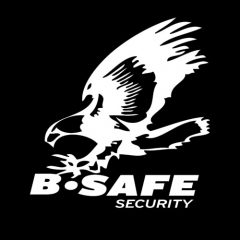 b safe security | cctv, fire monitoring & alarm systems